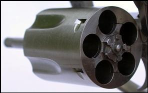 Revolver Book Ruger SP101vsM60 005.JPG